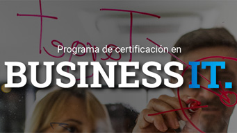 Business IT Program