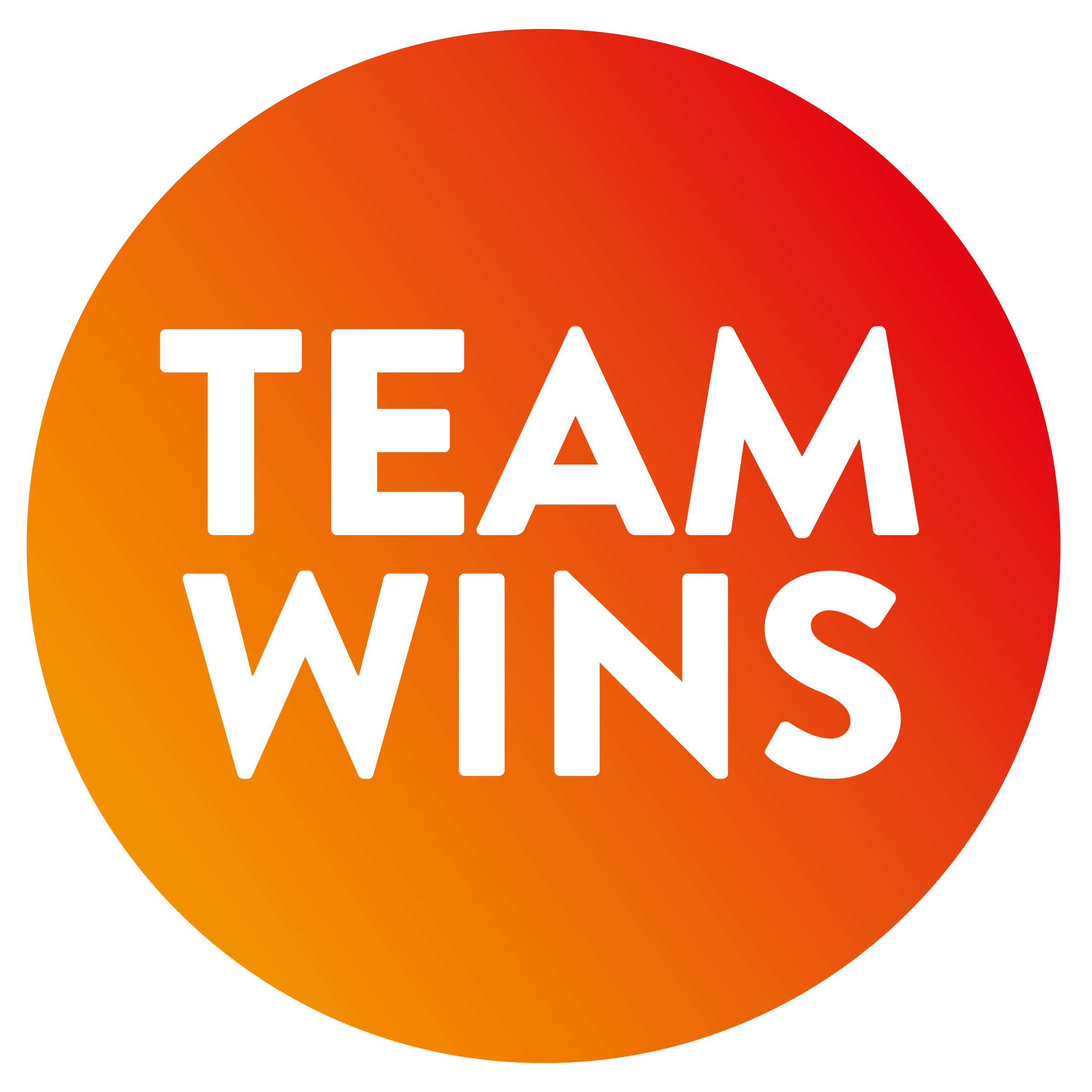 Logo Team Wins